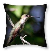 Ruby-throated Hummingbird - Just Beautiful Throw Pillow