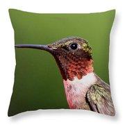 Ruby-throated Hummingbird - Macho Man Throw Pillow
