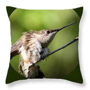 Ruby-throated Hummingbird  - The Stretch Throw Pillow