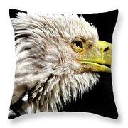 Ruffled Bald Eagle Throw Pillow