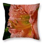 Ruffles And Rain Throw Pillow
