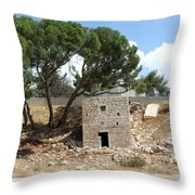 Ruined Castle Throw Pillow