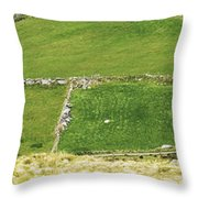 Ruins Of Irish Chieftains House Near Moll Gap Ireland Throw Pillow