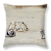 Run Little One  Piping Plover Throw Pillow