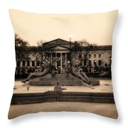 Running Dry Throw Pillow