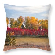 Rural Country Autumn Scenic View Throw Pillow