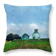 Rural Farm Throw Pillow