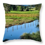 Rural Landscape After Rain Throw Pillow