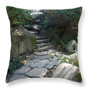 Rural Steps Throw Pillow