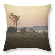 Rural Sunrise Throw Pillow