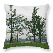 Rural Trees Iv Throw Pillow