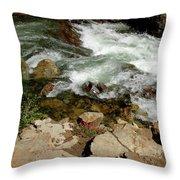 Rushing Water Glen Alpine Creek  Throw Pillow