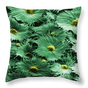 Russian Silverberry Leaf  Throw Pillow