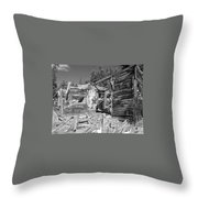Rustic Abode Throw Pillow