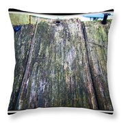 Rustic Boards Throw Pillow