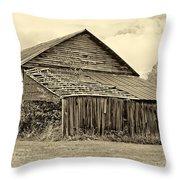 Rustic Charm Sepia Throw Pillow