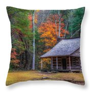 Rustic Colors Throw Pillow