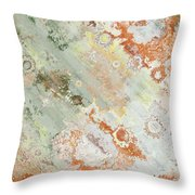 Rustic Impression Throw Pillow