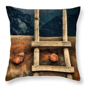 Rustic Ladder On Adobe House Throw Pillow