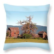 Rustic Old Homestead Throw Pillow