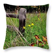 Rustic Road Charm Throw Pillow