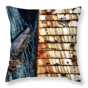 Rusting Boat Anchor Throw Pillow