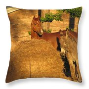 Rusty And Brown Sugar Throw Pillow