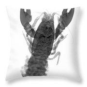 Rusty Crayfish Throw Pillow