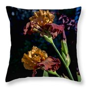 Rusty Petals Throw Pillow