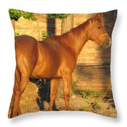Rusty Standing Proud Throw Pillow