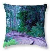 S Curve In The Forest Throw Pillow
