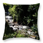 Sable Falls Grand Marais Mi Throw Pillow