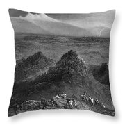 Sacramento Valley, C1846 Throw Pillow