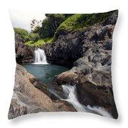 Sacred Pool Falls Throw Pillow