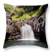 Sacred Pool Waterfall Throw Pillow