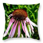 Sad Cone Flower Throw Pillow