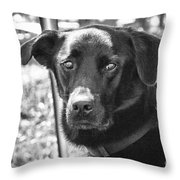 Sad Eyes Throw Pillow