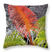 Sadleria Fern Hawaii Throw Pillow