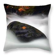 Safe Haven Throw Pillow