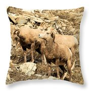 Safety In Numbers Throw Pillow