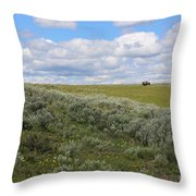 Sagebrush And Buffalo Throw Pillow