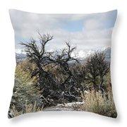 Sagebrush And Snow Throw Pillow
