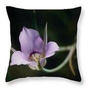 Sagebrush Mariposa Lily Throw Pillow