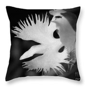 Sagi-so Or Crane Orchid Named Japanese Egret Flower Throw Pillow