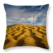 Sahara Desert, Tunisia, Africa Throw Pillow