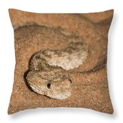 Sahara Sand Viper Cerastes Vipera Throw Pillow