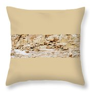 Saint Catherine Sinai Throw Pillow