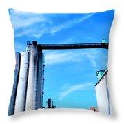 Saint Mary's Grain Mill Throw Pillow