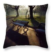 Saint Stephens Green, Dublin, Co Throw Pillow