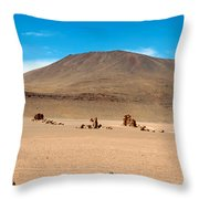 Salar De Tara Throw Pillow